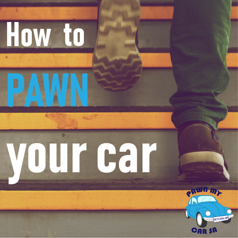 Pawn my car sa how to pawn your cat and get instant cash